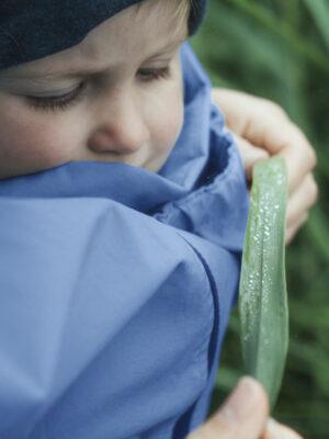 Mamalila 4-in-1 Babywearing Rain Jacket Vintage Blue 2